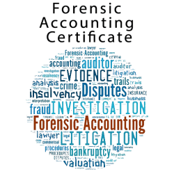 Forensic Accounting Certificate